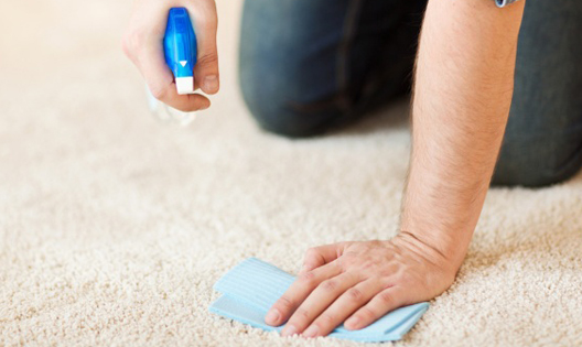 carpet-cleaning-img-2